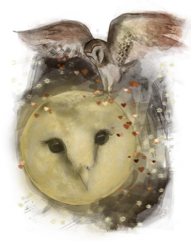 Stormenderland - Uil en de maan