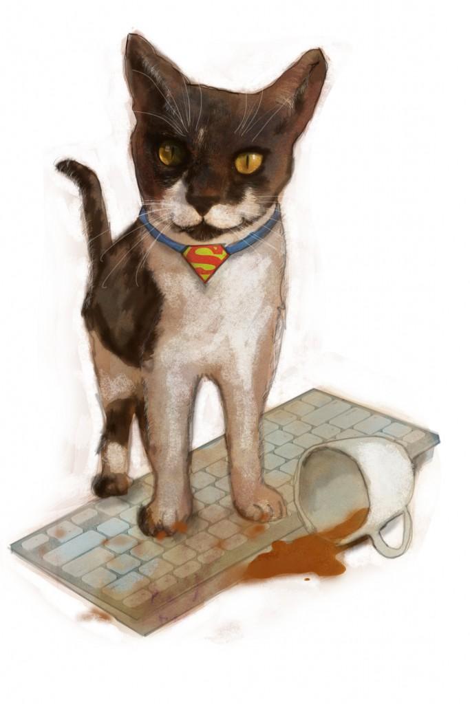 Stormenderland - Kat de Redder, Super-kat