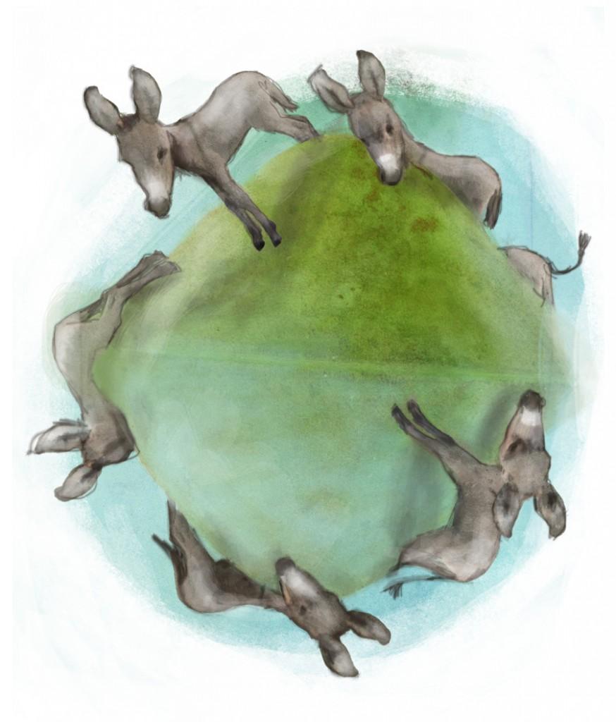 stormenderland - Een ezel die over de heuvel ging